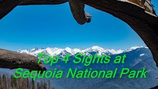Top 4 Sights at Sequoia National Park