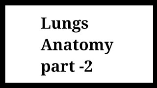 Lungs Anatomy ( Apex , base , borders , surface ) of lungs / lungs in hindi / learn with fun