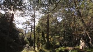 preview picture of video 'El Termet de Vila-real, un espacio para compartir'