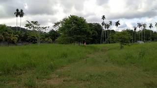 2 Rai (3,200 sqm) Land with Mountain and Big Buddha Views in a Central Chalong Location