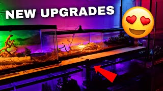 Upgrading My ANIMAL ROOM (Substrate, Water Dishes, & MORE) | Tomas Pasie