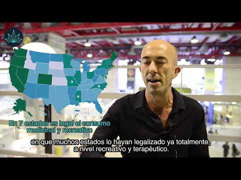 ntrevista a Raúl del Pino