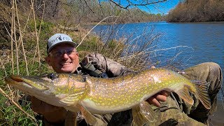 Famous Lure Catches MONSTER fish!!! {Catch Clean Cook} Delta Outfitters