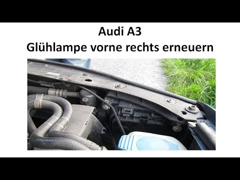[Tutorial] Audi A3 8L Glühlampe vorne wechseln