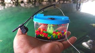 BEST MICRO Fishing Challenge With WORLDS SMALLEST Rod And AQUARIUM!!! (Help Identify)