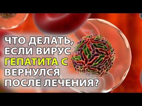 Вероятность заражения гепатитом с и в бытовым путем