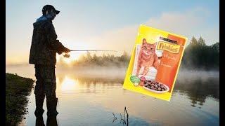 Собачий корм как прикормка на рыбалке