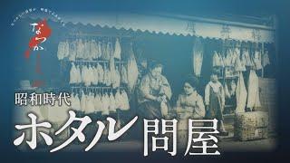 昭和時代 ホタル問屋【なつかしが】