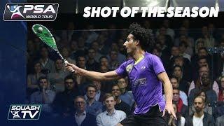 Squash: Shot of the Season - Men