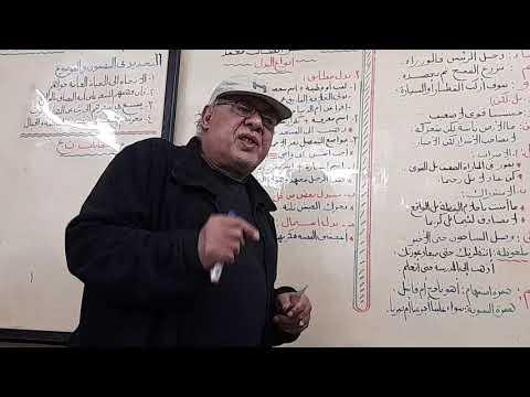 نحو- (الدروس المكملة للمنهج) البدل للصف الثالث الثانوي | عبد الناصر السيد  | اللغة العربية الصف الثالث الثانوى الترمين | طالب اون لاين
