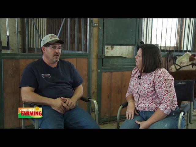Virginia Farming: Mini Breeds of Cattle