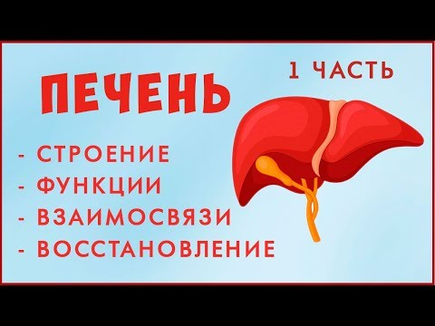 5 причин гипертонии