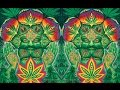 1200 Micrograms - Hashish [Visualization]