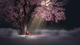 Tránh Duyên| Đình Dũng| MV Lyrics