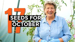 What to sow in October | Veggie seeds for October | Self-sufficient vegetable garden