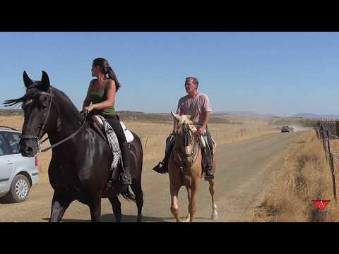 Ruta a caballo del dia de Altagracia - Alko TV