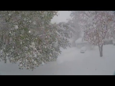 Drone Video Shows The Snow Wall Storm From The Inside