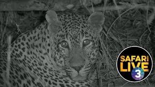 safariLIVE on SABC 3 - Episode 1