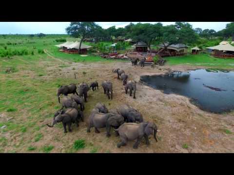 Somalisa in the Green Season, Hwange National Park, Zimbabwe