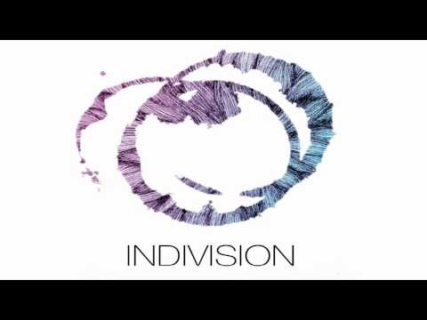 Indivision & Wreckage Machinery - Too Alive!