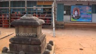 Thrippannicode Temple in Kanyakumari