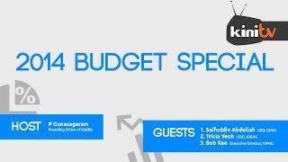 Budget 2014 Special: Expert Analysis