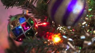 Butterbeans & Susie - Papa Ain't No Santa Claus (tUmp Christmas #29)