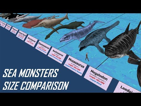Comparing Sea Monster Sizes