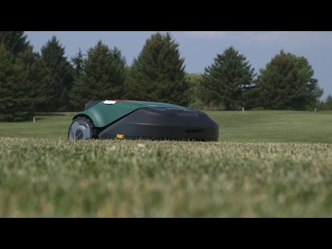 Consumer Reports Examines Best Buy Lawn Mowers Tools