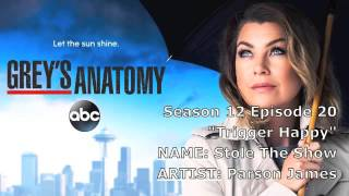 "Grey's Anatomy Soundtrack - ""Stole the Show"" by Parson James (12x20)"