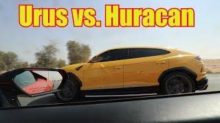 Lamborghini Urus EMBARASSES Huracan
