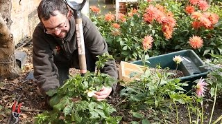 Top Tips from National Trust gardens - October