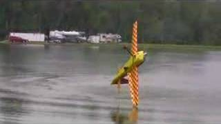 Snapasaurus Gets Wet at Joe Nall 2008