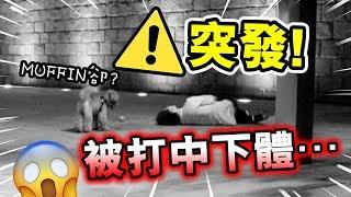 【⚠️突發】測試射球神器「慘被擊中下體」!?😱...狗狗卻過來做這動作?(中字)