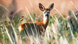 Animals #50 - Watercolor Painting Of A Deer