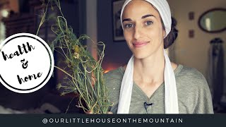 The Lost Remedy Of Dill // Benefits & Uses