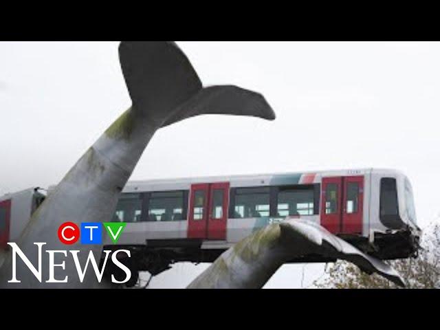 Как в Нидерландах кит спас целый поезд