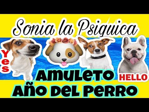CARGA ESTÉ AMULETO PARA AÑO DEL PERRO