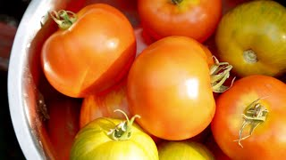 What makes a Jersey tomato so great?