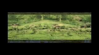 MEGAMALAI (HIDDEN PARADISE) TRAVEL HD VIDEO 7-5-2011
