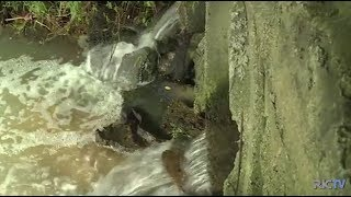 Programa RIC Notícias SC - Encontro em Florianópolis discute o futuro da água