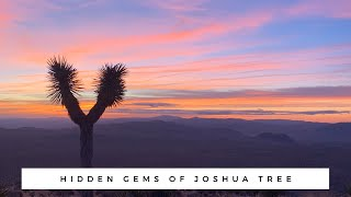 JOSHUA TREE | Hidden Gems: The best things to do in Joshua Tree