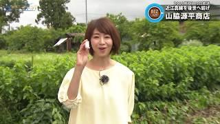 2020年6月13日放送分  滋賀経済NOW