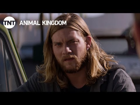TV Trailer: Animal Kingdom Season 2 (1)