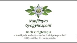 Mi a Bach Virágterápia- beszélgetés Szabó Norbert Bach-virágterapeutával.