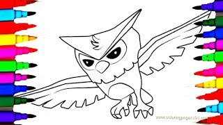 NEW How To Draw OWL Animal Jam Coloring Pages L Kids Drawing Learn Colors