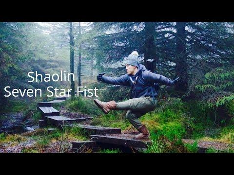 Shaolin Seven Star Fist (Qi Xing Quan) - Practice