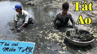 Tát cái ao bỏ hoang kết quả bất ngờ | Tát ao bắt cá | catch fish in vietnam | THÚ VUI MIỀN TÂY 46