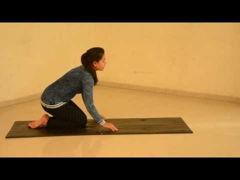 Eserciti scoliosis per una spina dorsale
