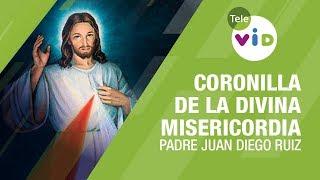 Coronilla de la Divina Misericordia, 1 Julio 2020, Padre Juan Diego Ruiz - Tele VID